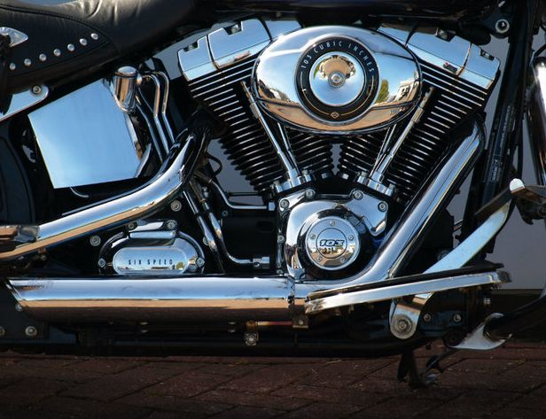 2012 Harley-Davidson Softail image 2