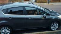 2016 Ford Fiesta 125 Titanium image 2